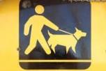 Dog Bylaw